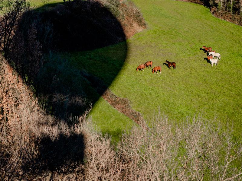 vol-en-globus--en-familia-cavalls