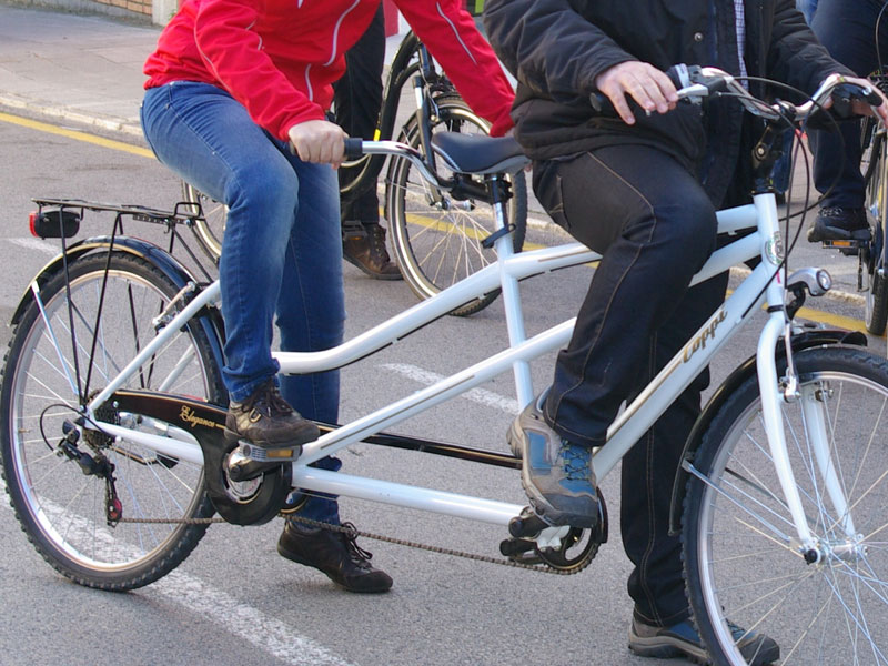pedalantvolcans7.jpg